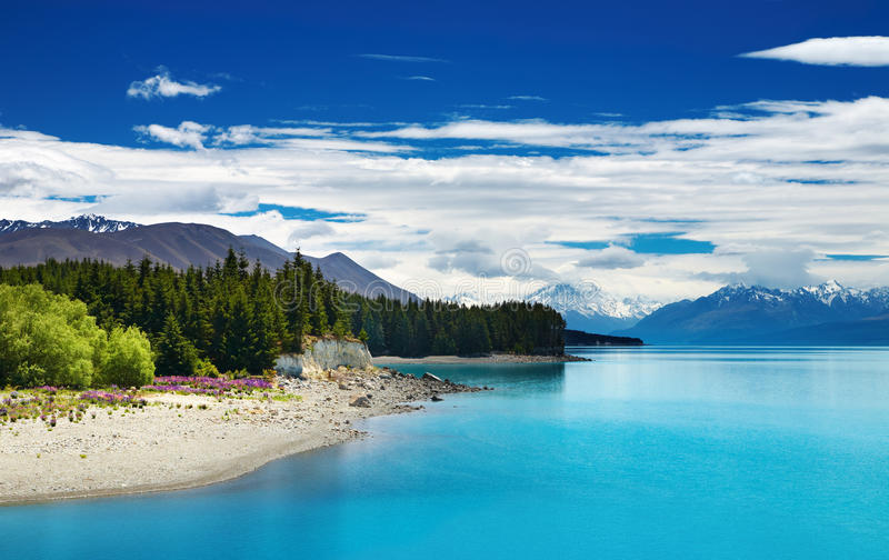 Pukaki lake, New Zealand stock photo