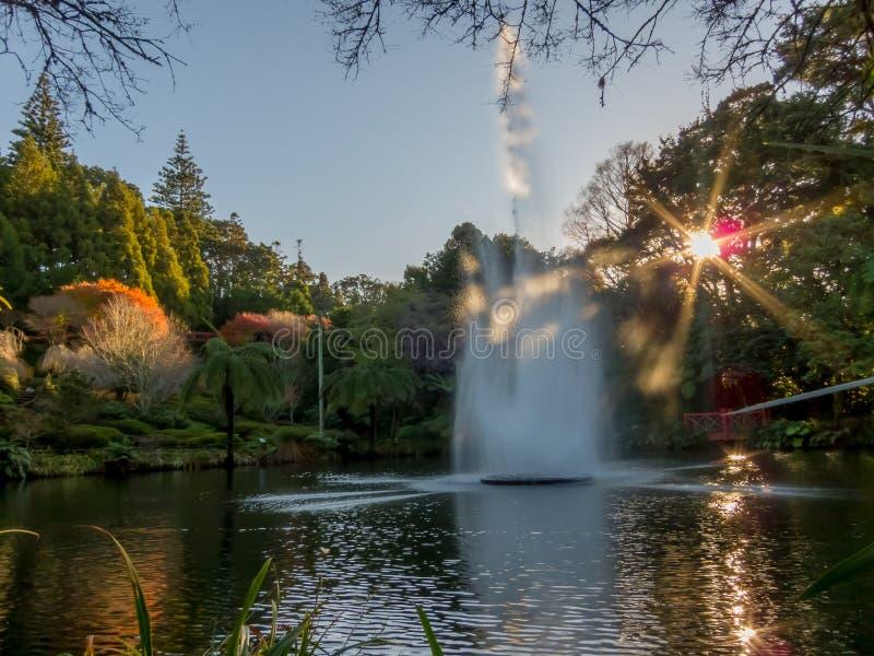 Pukekura公园喷泉 库存照片