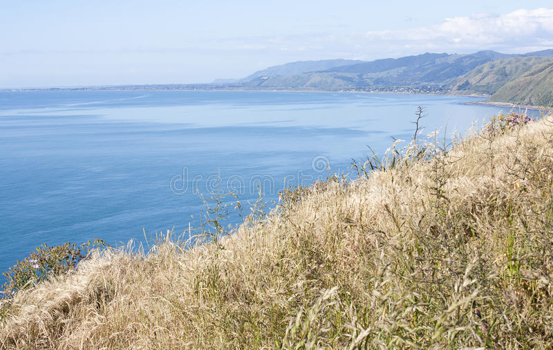 Pukerua海湾,新西兰 库存图片