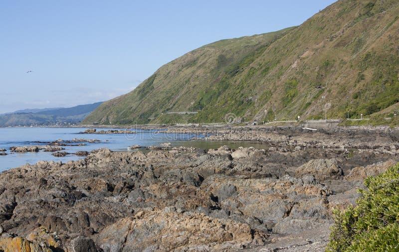 Pukerua海湾,新西兰 免版税库存照片