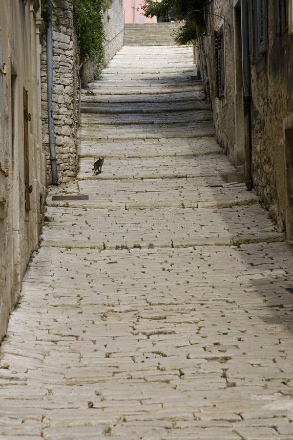 Download Pula narrow stone street stock photo. Image of historic - 11054828