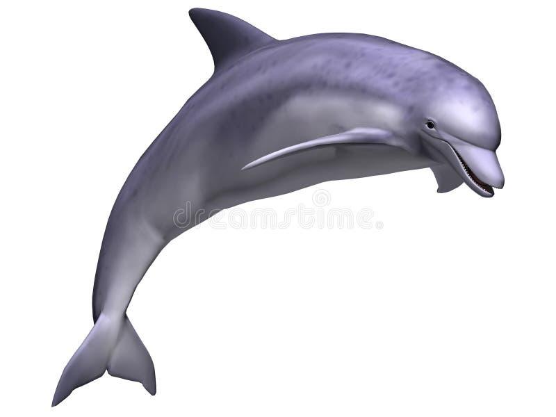 Pulando o golfinho ilustração do vetor