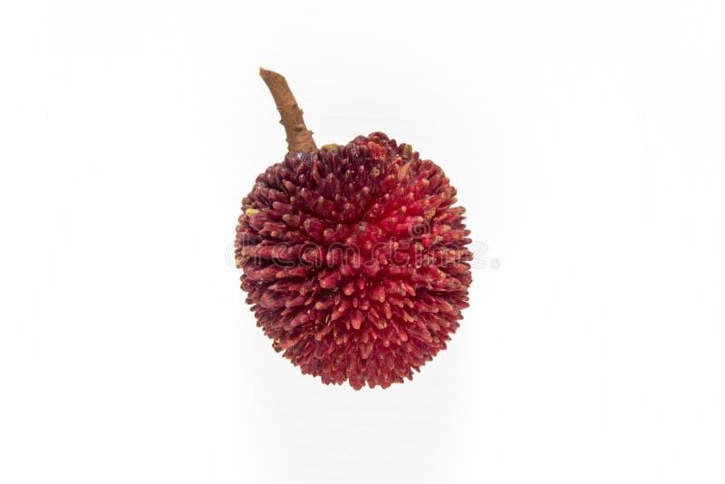 Pulasanfruit op witte achtergrond wordt geïsoleerd die royalty-vrije stock afbeelding