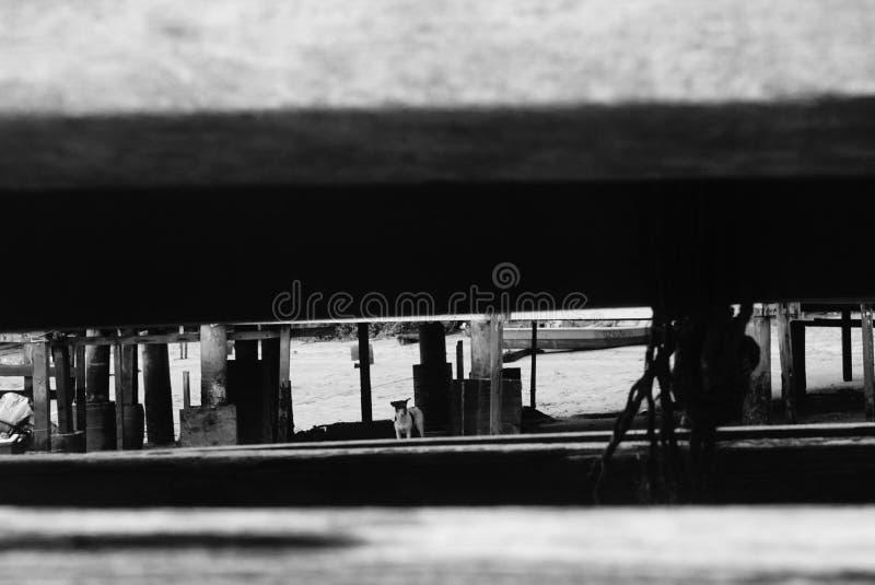 Pulau Ubin przed zmiana komesami fotografia stock