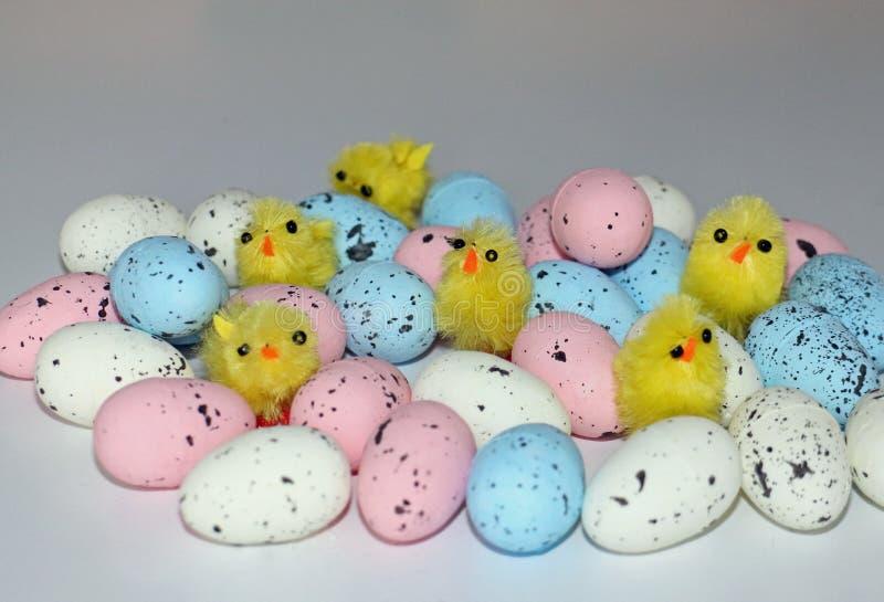 Pulcini di Pasqua su un mucchio delle uova immagini stock
