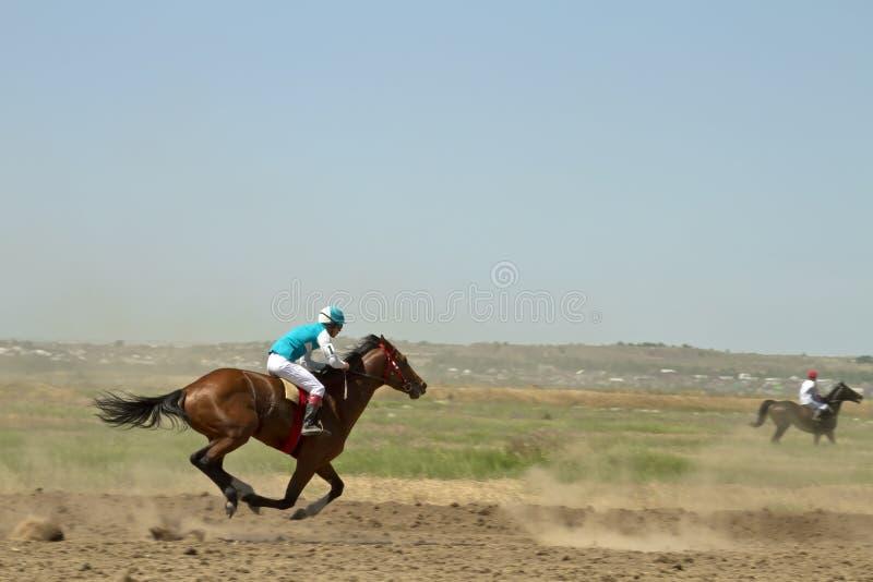 Puleggia tenditrice che monta un cavallo durante le ippiche immagini stock