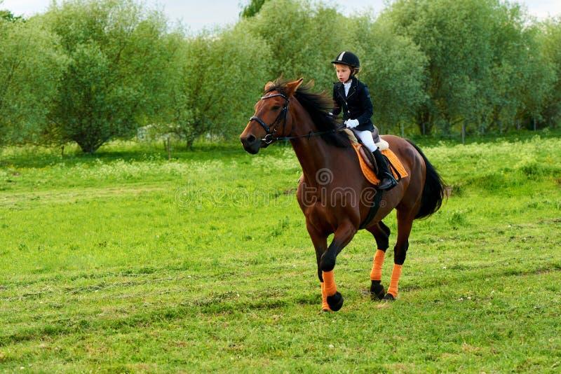 puleggia tenditrice della bambina che monta un cavallo attraverso paese in attrezzatura professionale immagine stock