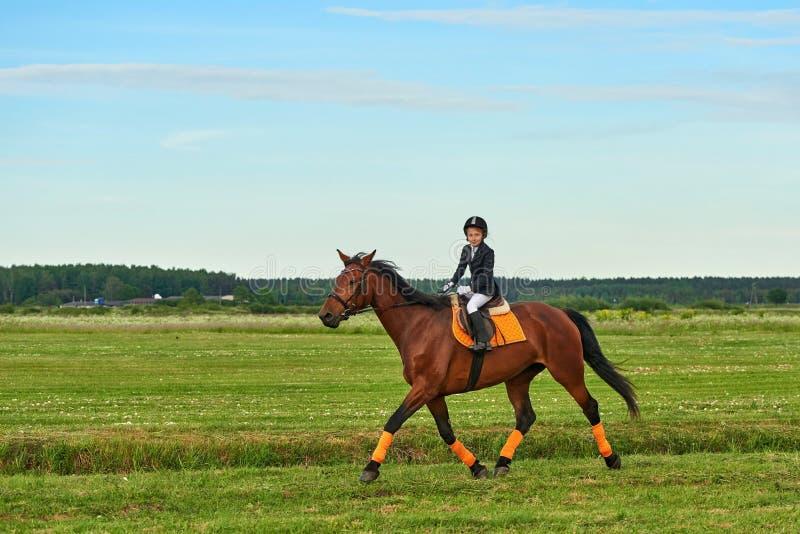 puleggia tenditrice della bambina che monta un cavallo attraverso paese in attrezzatura professionale immagini stock