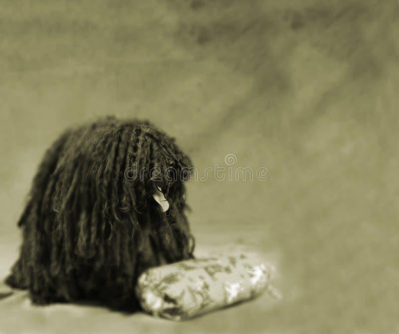 Download Puli fotografia stock. Immagine di sepia, cani, herding - 223138