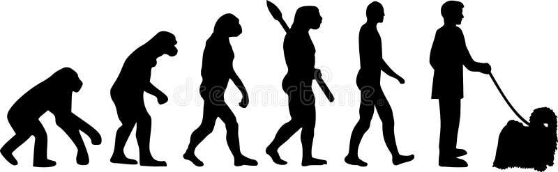 Puli ewolucja Darwin ilustracji