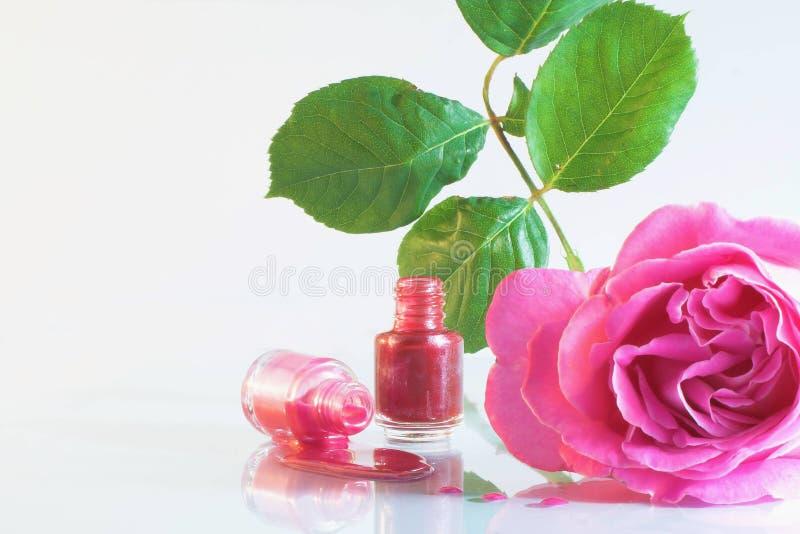 Pulimento de clavo y flor color de rosa foto de archivo