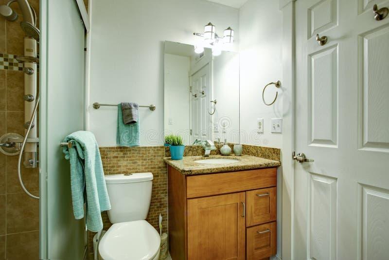 Pulisca l'interno bianco minimo del bagno immagine stock