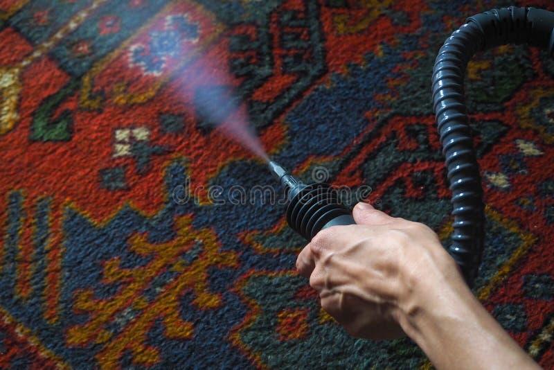 Pulizia del tappeto dal vapore Generatore di vapore immagini stock libere da diritti