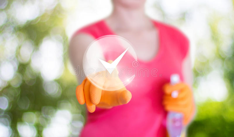Pulizia finita donna delle pulizie fotografia stock