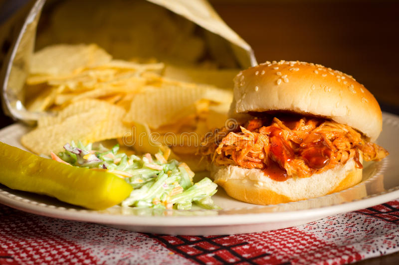 Download Pulled Pork Sandwiich stock photo. Image of cook, meal - 29026552