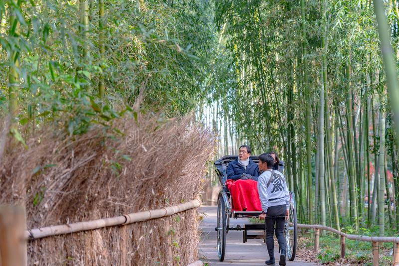 Pulled rickshaw riding tourists through a bamboo forest path at Arashiyama, Kyoto royalty free stock photo