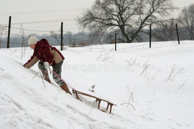 Download Pulling sleds stock photo. Image of enjoy, glove, activity - 457410