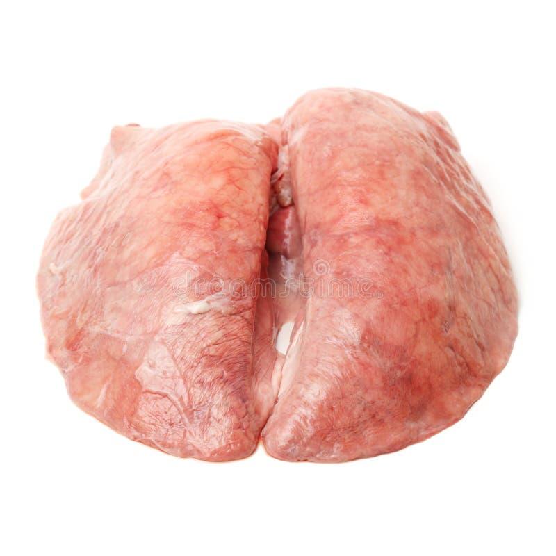Pulmão do porco foto de stock royalty free
