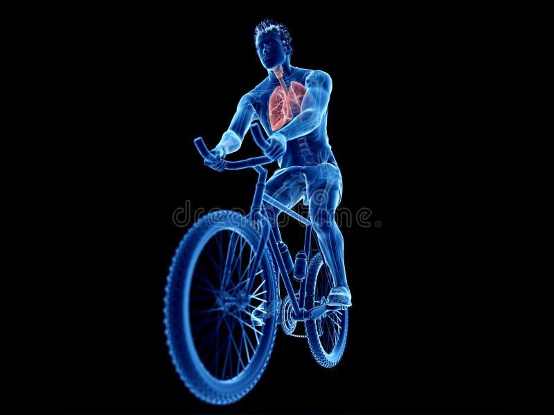 pulmão dos ciclistas ilustração stock