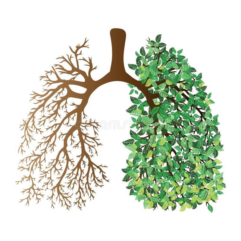 Pulmões humanos Sistema respiratório Pulmões saudáveis Luz sob a forma de uma árvore Linha arte Desenhar à mão medicina ilustração stock