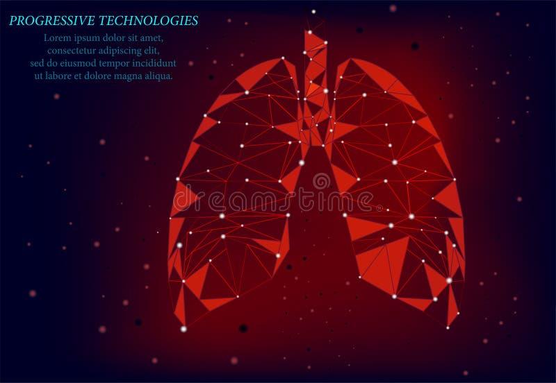 Pulmões saudáveis modelo de medicina 3d baixo Tecnologias progressivas Os pulmões humanos têm veias e vários nervos Tratamento do fotografia de stock