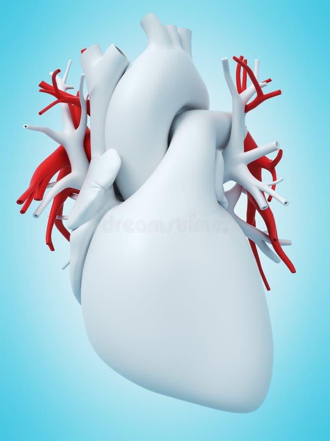 The pulmonary artery stock illustration