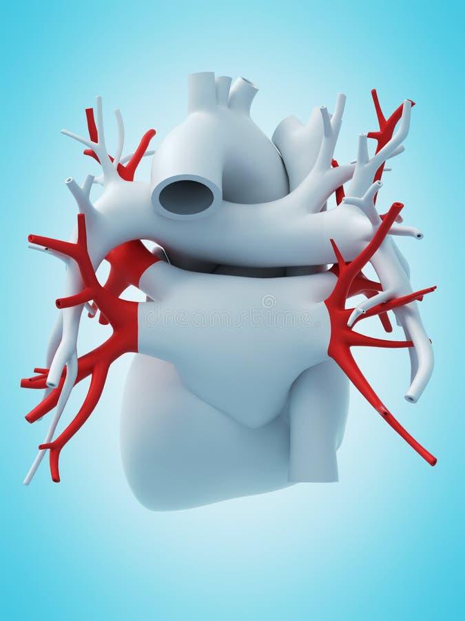 The pulmonary veins vector illustration