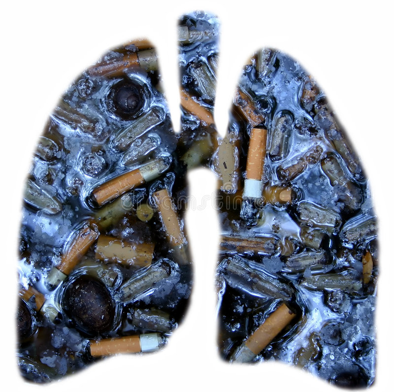 Pulmones de los fumadores foto de archivo