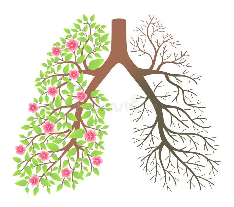 Pulmones. Efecto después de fumar y de la enfermedad ilustración del vector