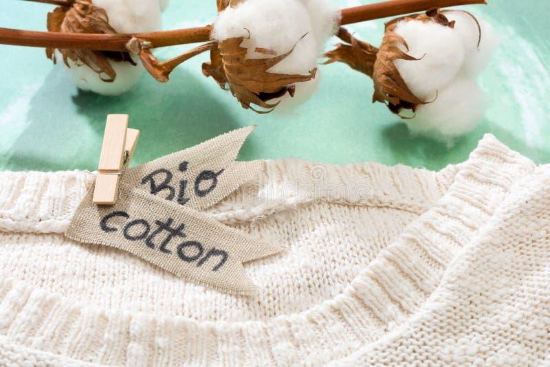 Pulower robić naturalne tkaniny i gałąź z bawełnianymi okwitnięciami zdjęcia royalty free