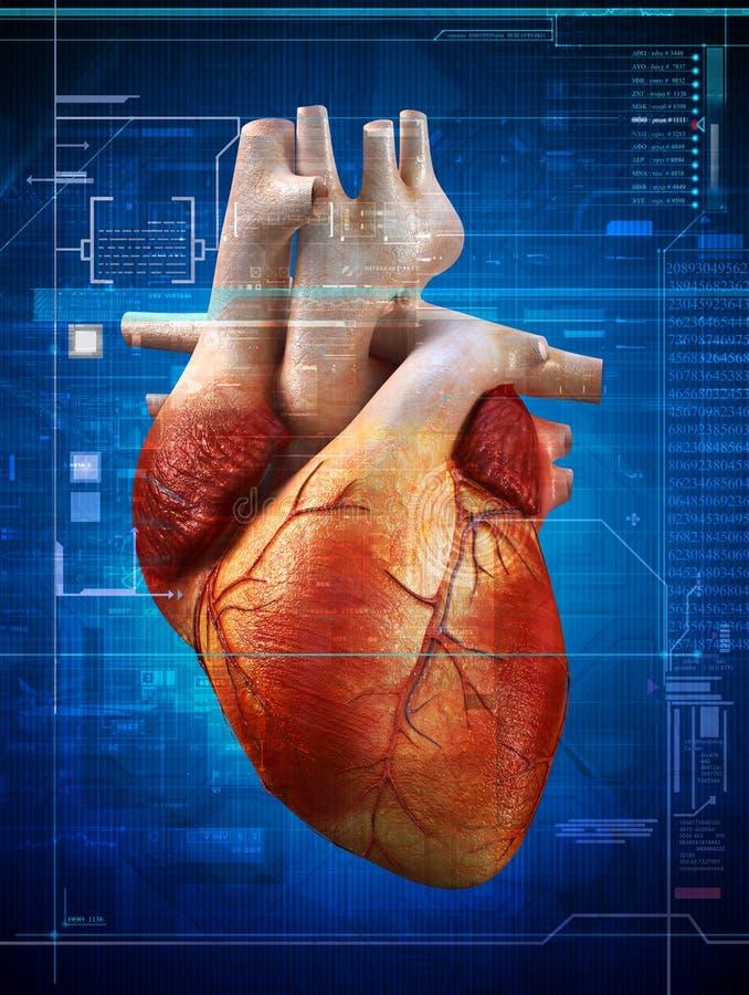 Pulsação do coração ilustração do vetor