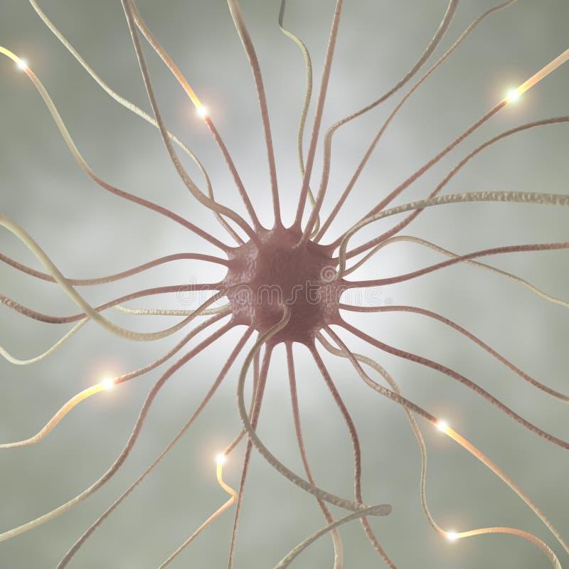 Pulso de la célula nerviosa fotos de archivo