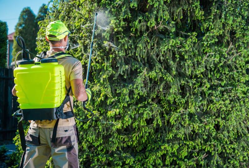 Pulvérisation de jardin d'insecticide photographie stock libre de droits