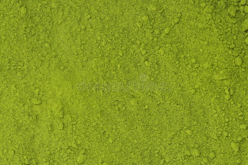 Pulver av matchaen för grönt te fotografering för bildbyråer