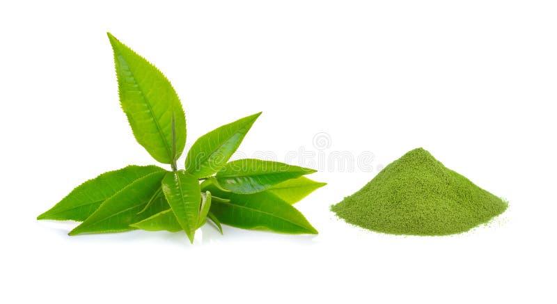 Pulverice el té verde y la hoja de té verde en el fondo blanco foto de archivo libre de regalías