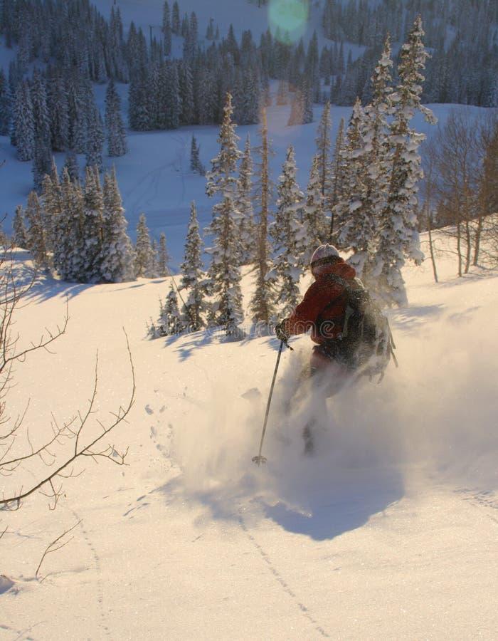 Pulverisieren Sie Skifahren lizenzfreie stockfotografie