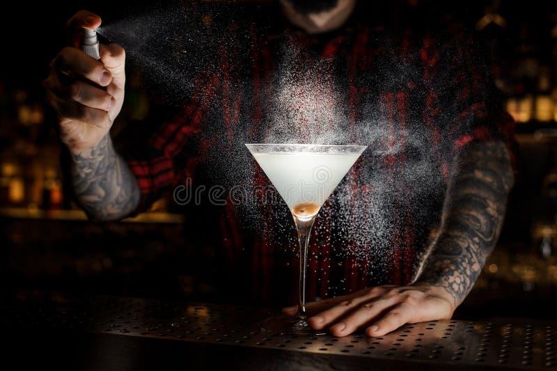 Pulverização do barman amarga no vidro com o mercado fresco e saboroso fotos de stock