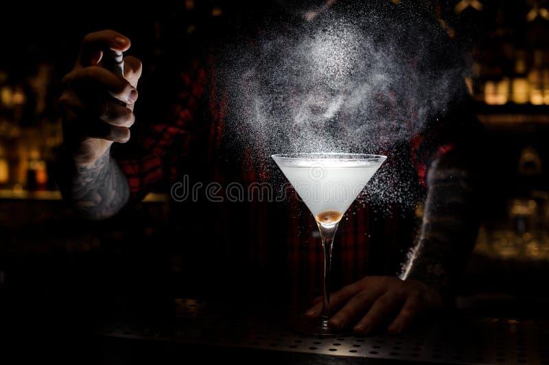 Pulverização do empregado de bar amarga no vidro com o martini fresco fotografia de stock royalty free