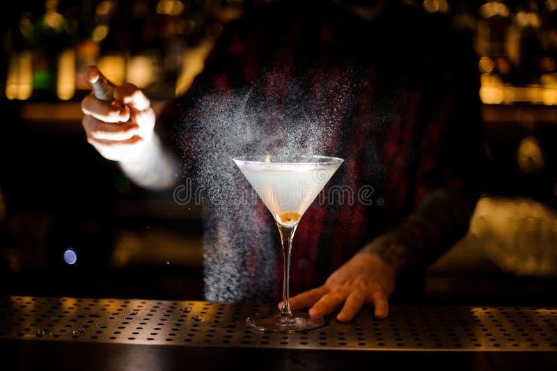 Pulverização do empregado de bar amarga no vidro elegante com o martini fresco fotos de stock