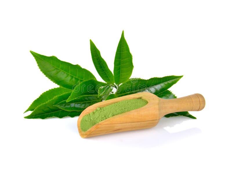 Pulverize o chá verde e a folha no fundo branco imagens de stock royalty free