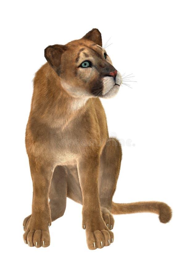 Download Puma de grand chat illustration stock. Illustration du mammifère - 56484464