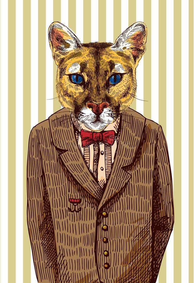 Puma in einer Jacke lizenzfreie abbildung
