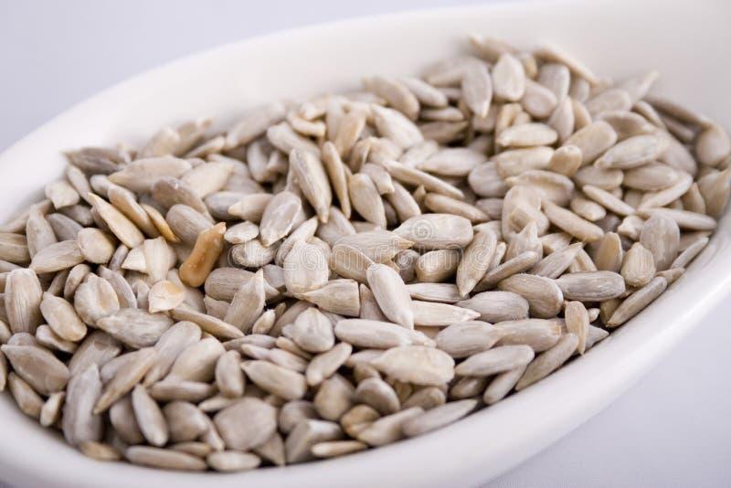 Download Pumkin Seeds Royalty Free Stock Photo - Image: 3889675