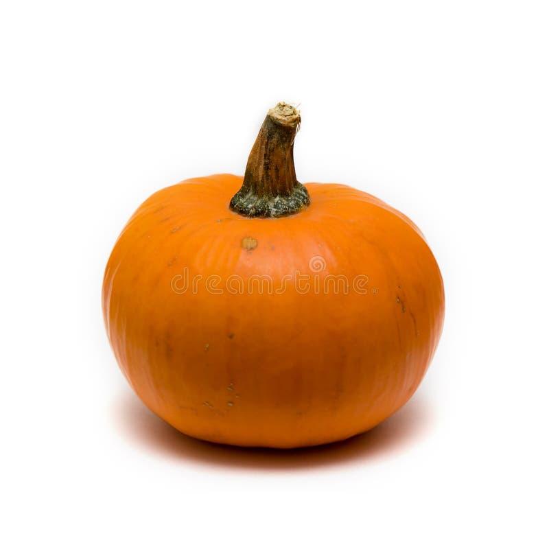 Download Pumkpin stock image. Image of seasonal, seasons, vegetable - 11514725