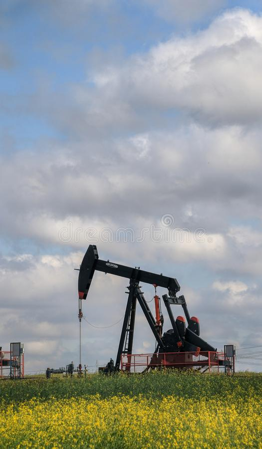 Pump Jack in a field stock image