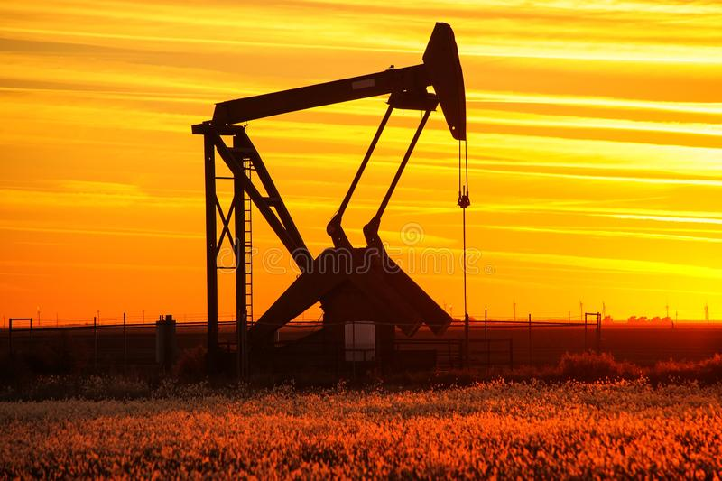 Pump jack in the oil field at sunset stock images