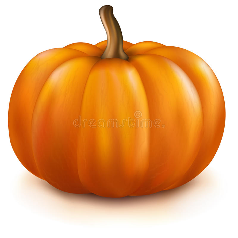 pumpa stock illustrationer