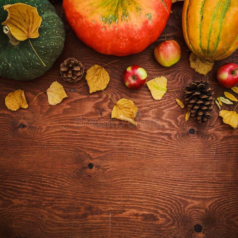 Pumpa, melon och äpplet bär frukt på träbakgrund Tacksägelsedag, höstbakgrund Lekmanna- lägenhet, bästa sikt arkivfoton