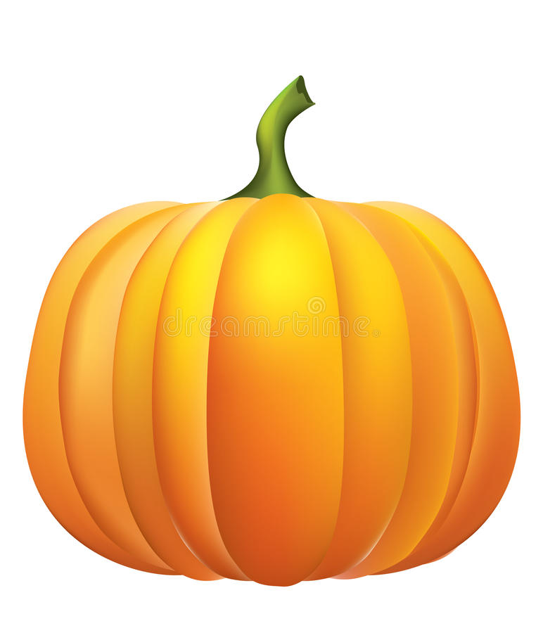 Pumpkin . royalty free stock images