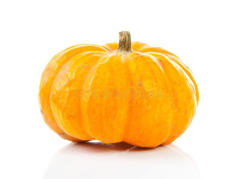 Download Pumpkin stock photo. Image of thanksgiving, orange, fruits - 16434504